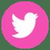 5cc85-pink_social2bmedia_twitter